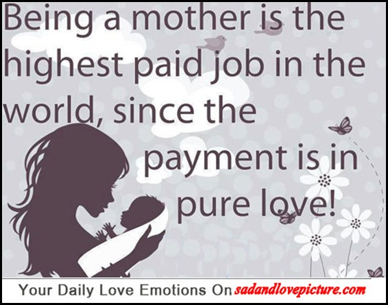 love mother in law quotes