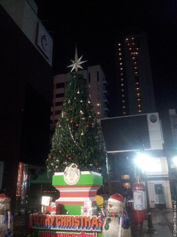 20121229_045340.jpg