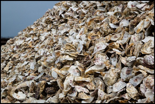 oyster-shell-mountain