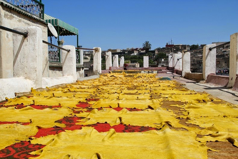 tannery-fez-4