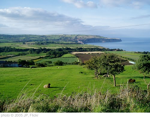 'Ravenscar, Yorkshire, Autumn 2005' photo (c) 2005, JP - license: http://creativecommons.org/licenses/by/2.0/