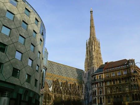 09. Catedrala din Viena.JPG