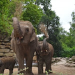 Zoo Emmen for all ages