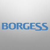 Borgess