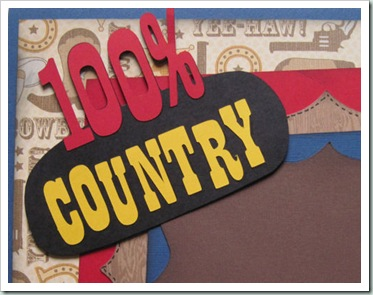 100 country sign