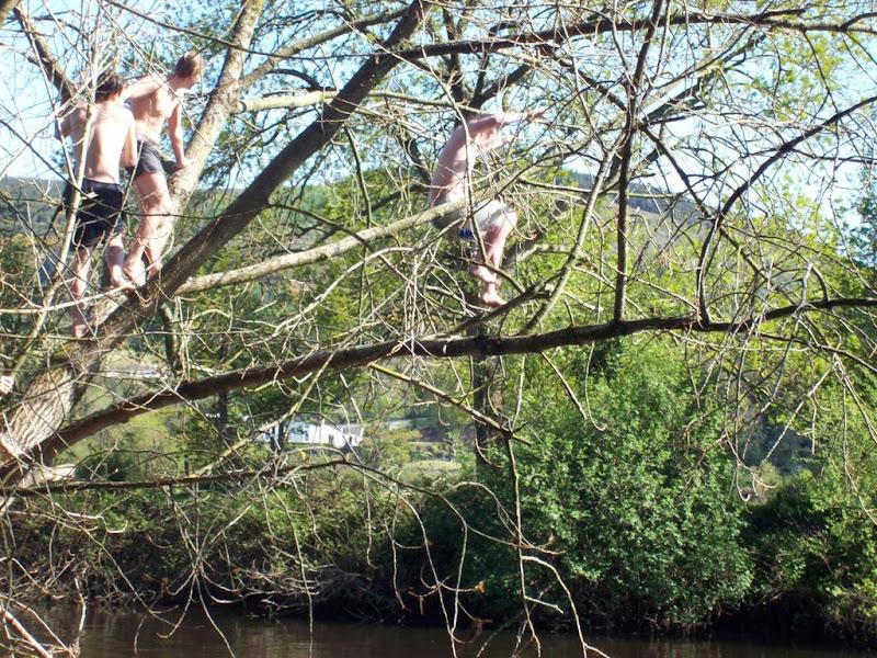 Giving it a go so River Suir Clomel -Ciarán McCollum.JPG