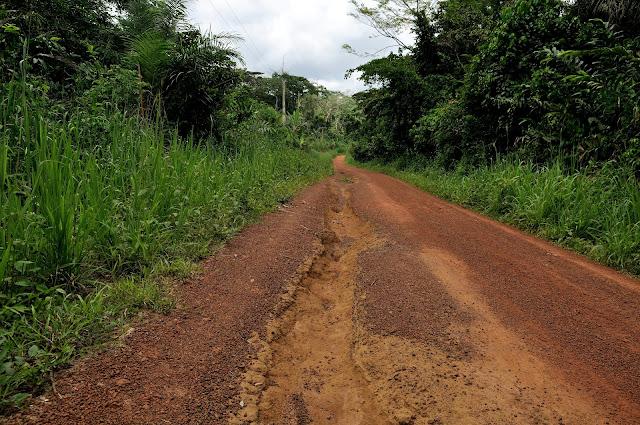 La piste (ravinée par les pluies) menant à Ebogo (Cameroun), 26 avril 2013. Photo : Daniel Milan