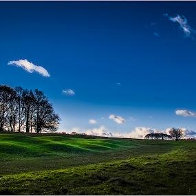 Dyrehaven 1 by Dusan Vukovic - Landscapes Prairies, Meadows & Fields