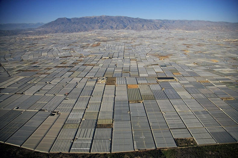 greenhouses-almeria