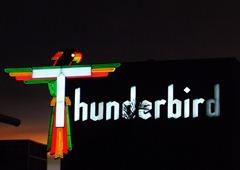 Neons-of-Florida---Thunderbird