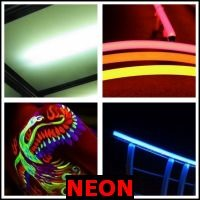 NEON- Whats The Word Answers