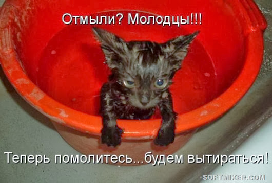 1339163850_017_13865_kotomatrix_17