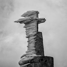 Cold in the Sierra by José Sobral - Black & White Landscapes ( 2009, pb, serra da estrela, josé sobral )