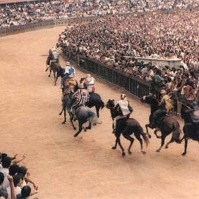 The Palio of Siena is a medieval equestrian competition that takes place twice a year in the Tuscan city.