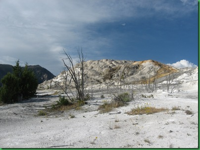 Mammoth Hot Springs Terraces (255)