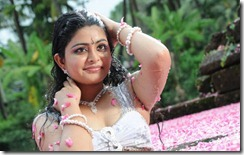 Actress Swathi Hot Stills in Pathirama Pathukkunga