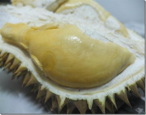 Durian Crème Brulee