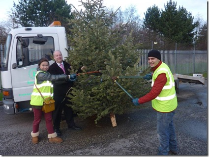 Paul Jackson from Fords of Winsford, centre, and Barclays staff grappling with the cutters as they part part in St Luke's Christmas Tree Recycling Scheme