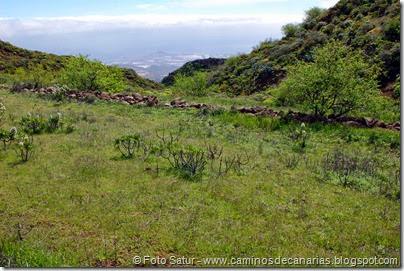 7692 Temisas-El Pinillo(Orilla del Seto)
