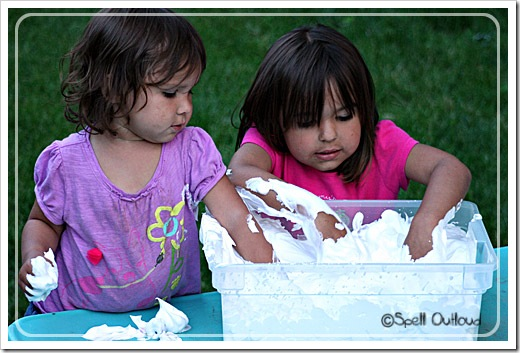 Toddler & Preschool Ice Cream Unit