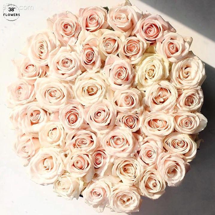 Chỉ là một hộp hoa hồng đơn giản thôi...Các bạn nữ có thích không ?