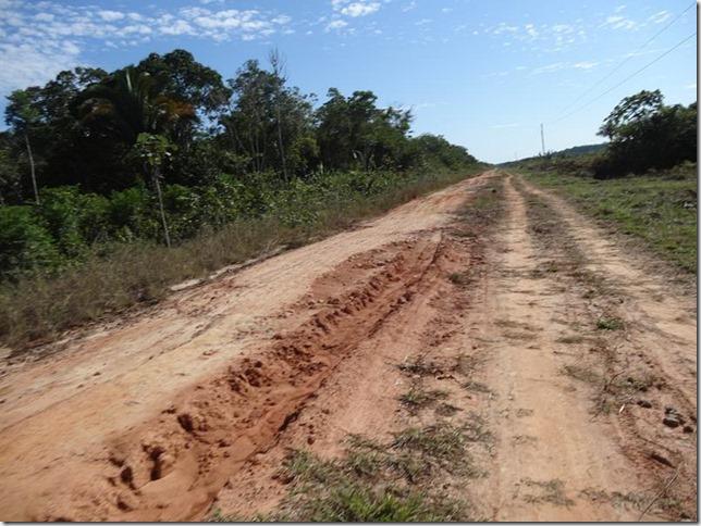 BR-319_Humaita_Manaus_Day_2_DSC05342