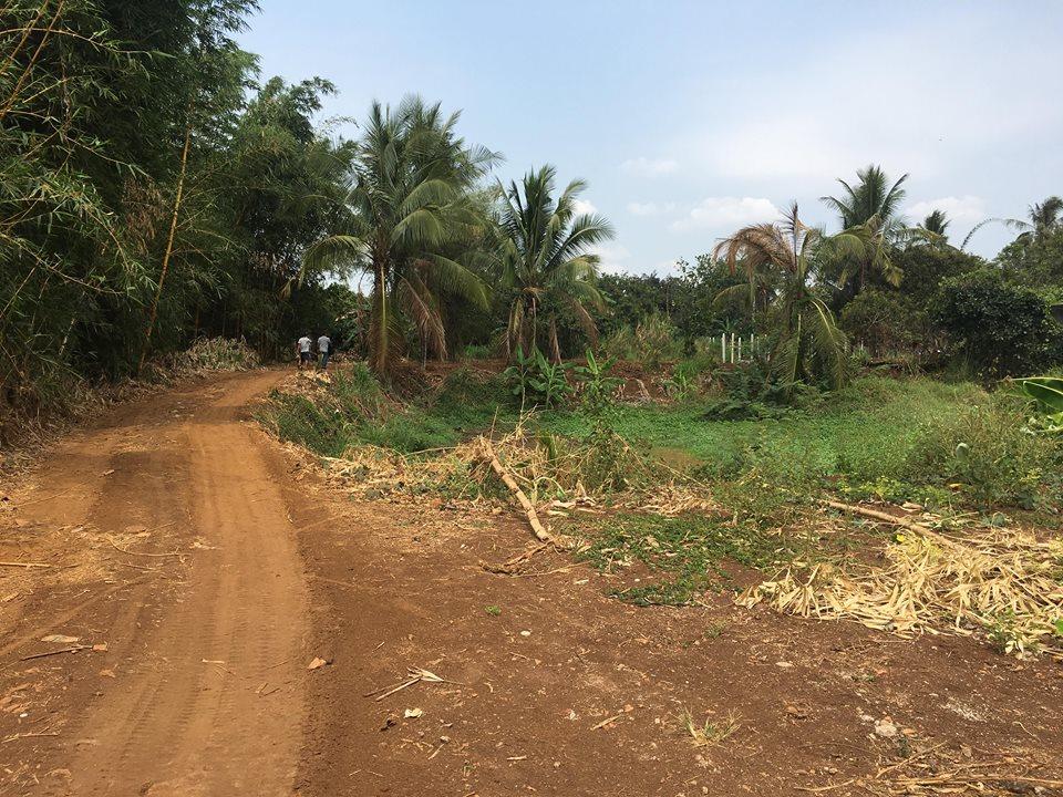 Bán đất vườn đường Hồ Thị Hương Thị xã Long Khánh 05