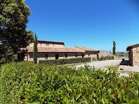 Etrusco 14_Lajatico_11