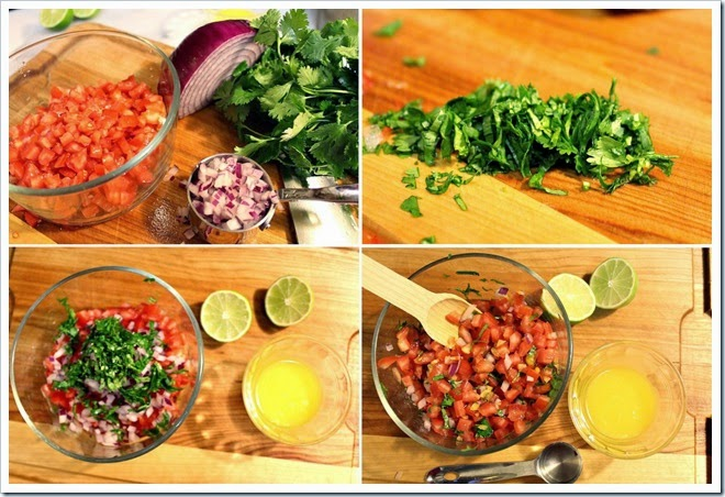 Xnipec Salsa | Instructions step by step, quick and easy