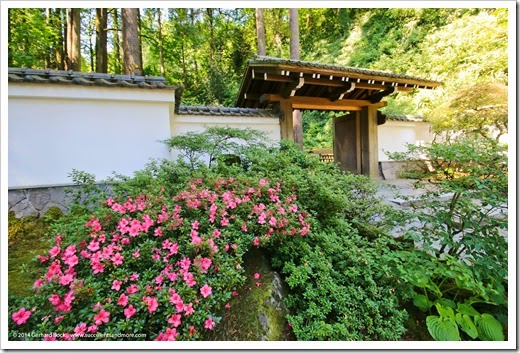140712_PortlandJapaneseGarden_067