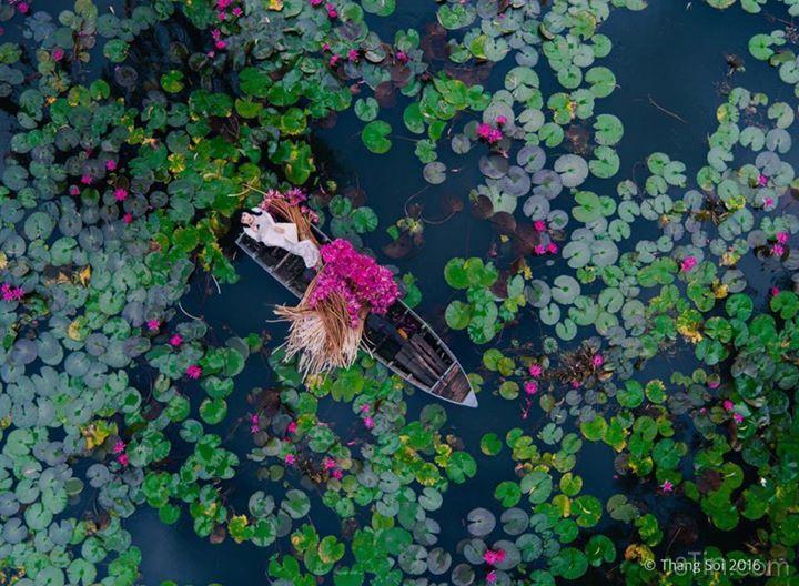 Phuong Thanh 03/05/2016