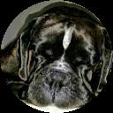 Immagine del profilo di GIOVANNA AGRIZZI