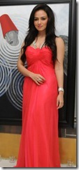 Actress Sana Khan Birthday Celebrations 2013 Photos