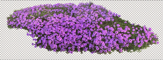 flower trees photoshop