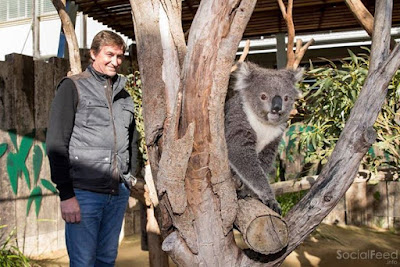 Enjoyed my time at TarongaZoo in Sydney What a great experience getting