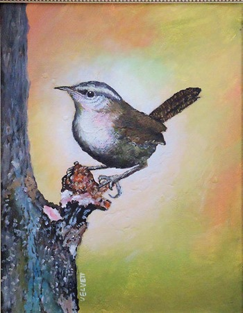 Wren bird painting