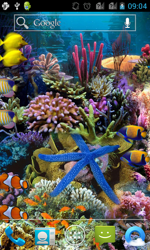 Aquarium Pre