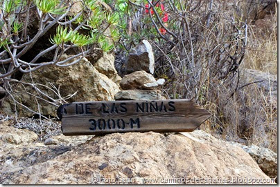 6784 Presa de las Niñas-Soria(Barés)ranquillo Andr
