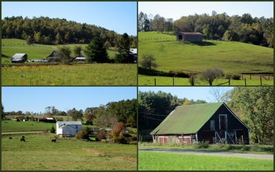 Blue Ridge Farms