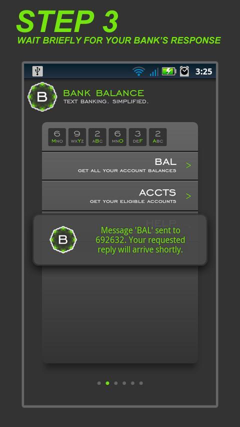 Bank Balance - screenshot