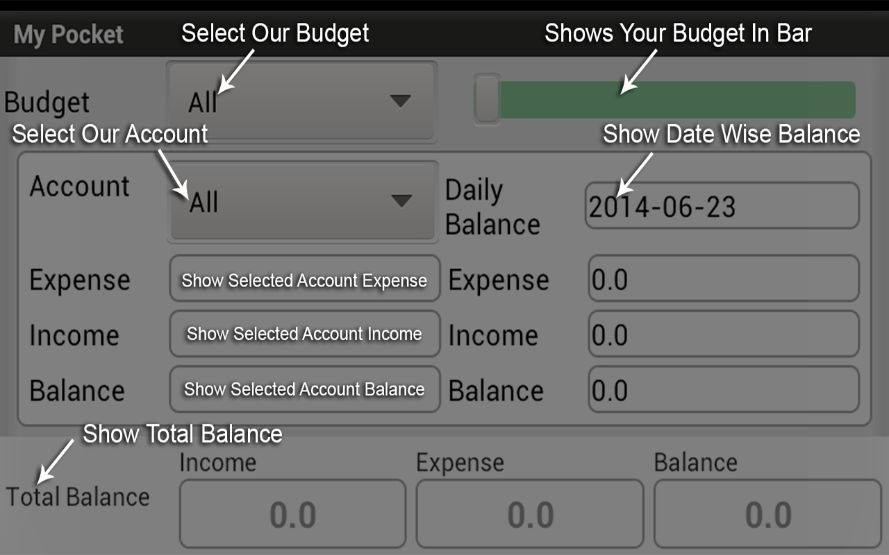 My Pocket-Free-Expense Manager - screenshot