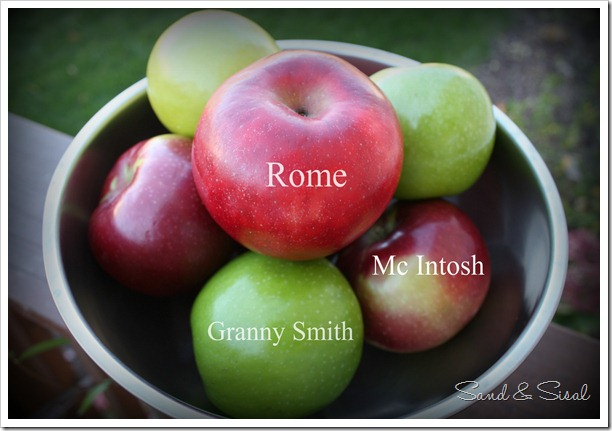 Apples for Apple Pie