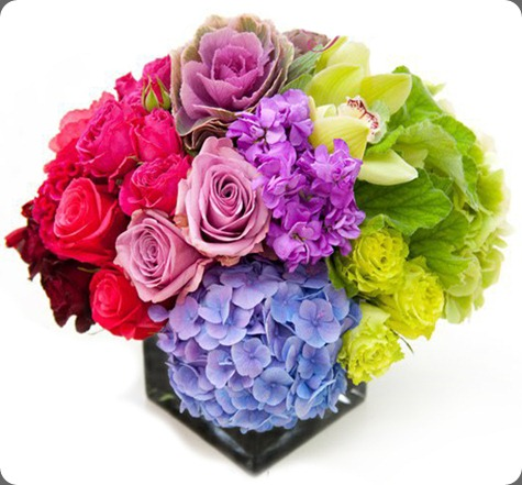 73583_121994414528100_100001526256267_140053_1469459_n bloom by Anuschka