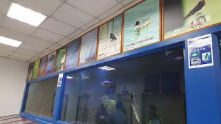 Các bể cá được cho là sống tốt trong môi trường nước thải ra biển của nhà máy.