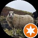 Reykjavik Review