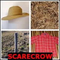 SCARECROW- Whats The Word Answers