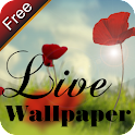 9s-LiveWonderlandWallPaperFree