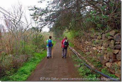 6987 Circular a Santa Brígida(Camino Murcia)