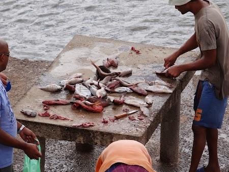 31. Pescari in Sal.JPG