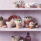 shell flower pots.jpg